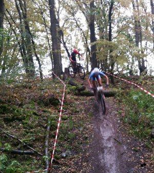 Strecke Wald VRG